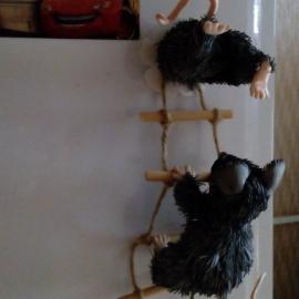 Мышки шалунишки