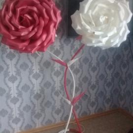 Ростовые цветы от Ольги.