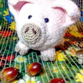 Домашняя свинка