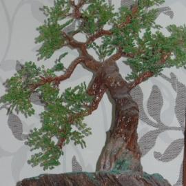 Бонсай зеленый